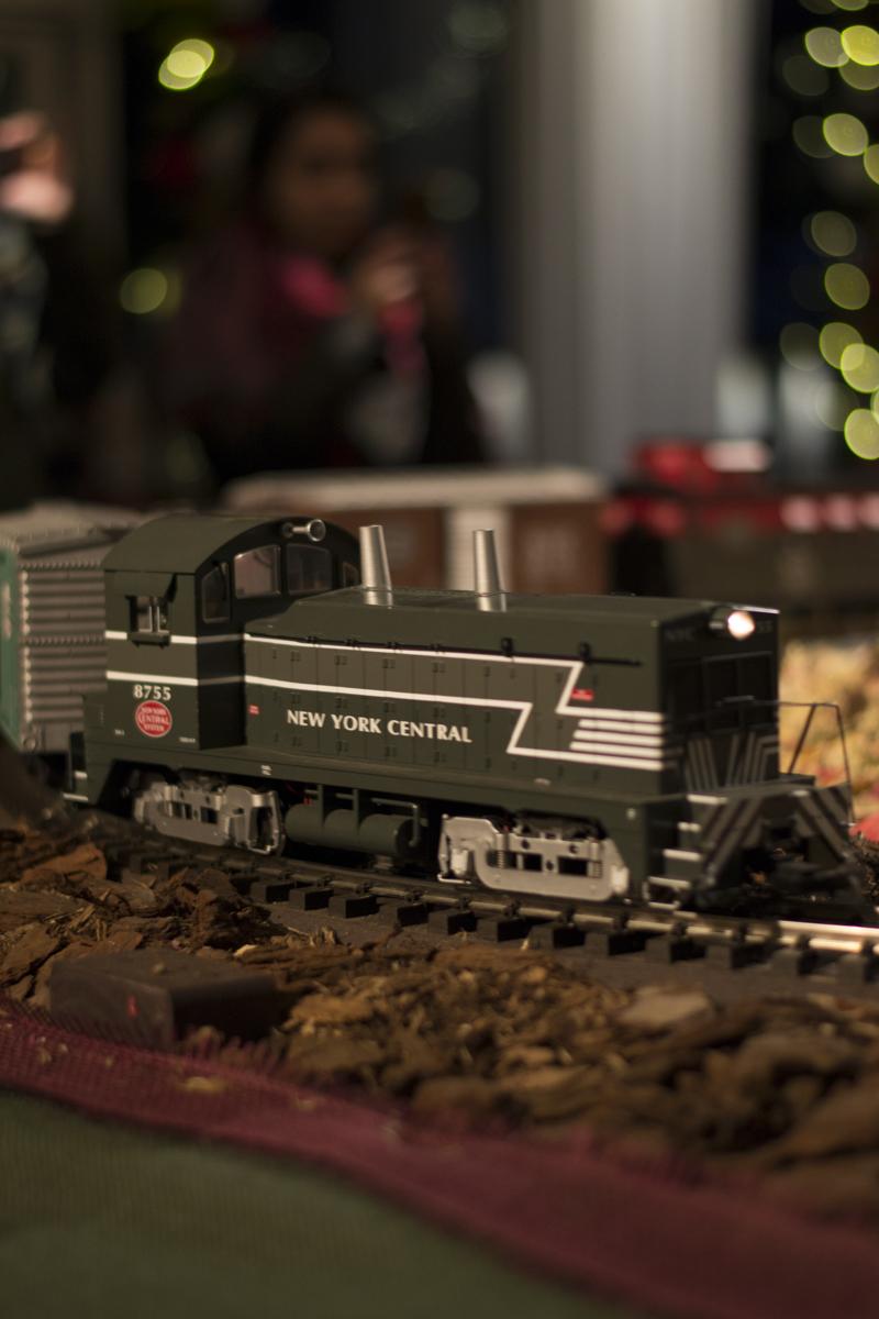NYBG Train Show 2015-18