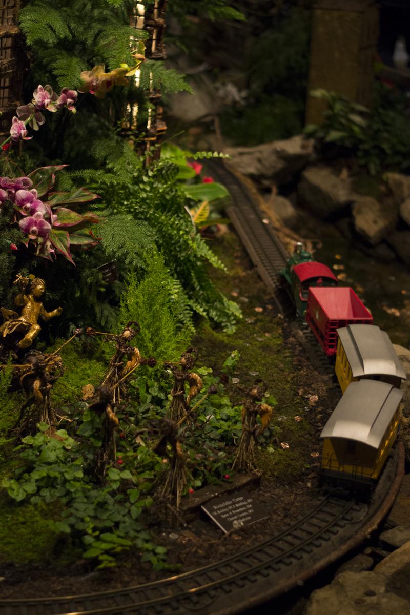 NYBG Train Show 2015-21